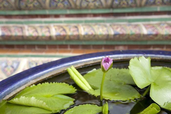 bangkok_09_054